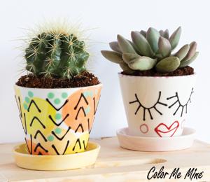Glendale, CA Cute Planters